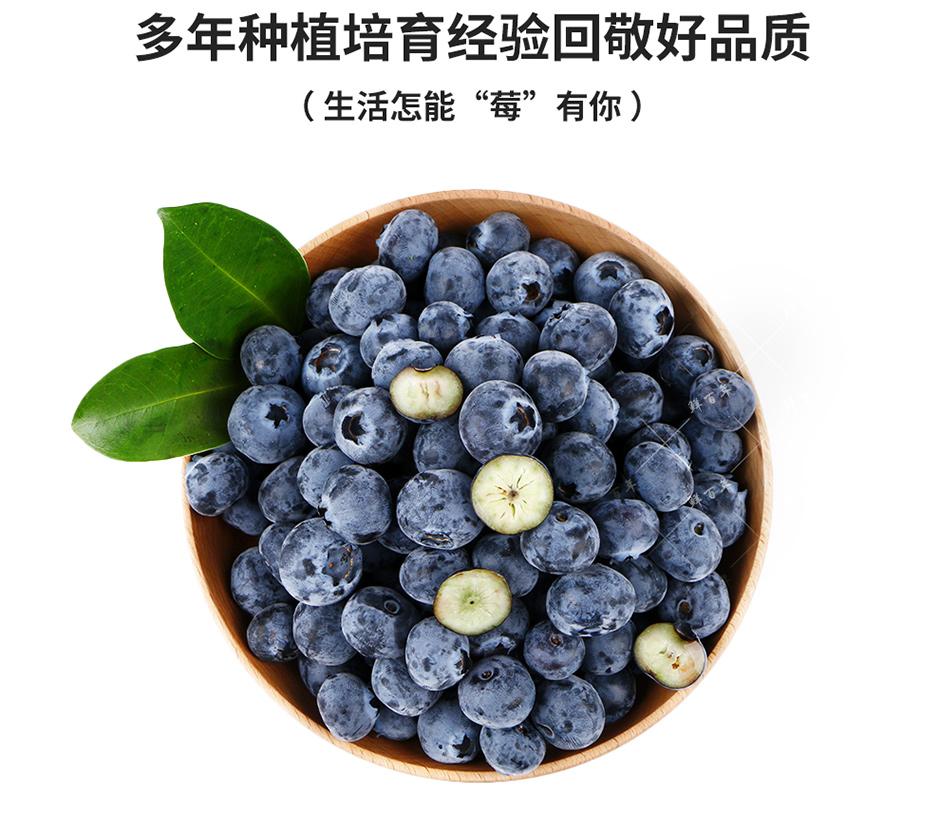 鲜百年 云南石林新鲜蓝莓 4盒装 125g/盒 新鲜水果